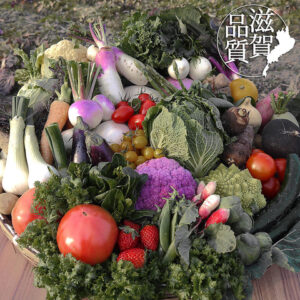 花様 ka-you 京橋京阪モール 野菜割烹の自然派和食店_03